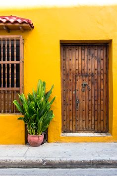 The colors of Puerto Rico.