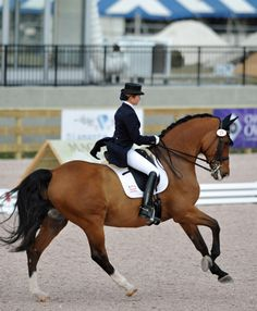 dressage, unbelievable communication between horse and rider, a true art.
