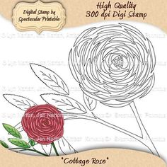 Cottage Rose Digital Stamp and Sentiments created from an original drawing by Jen Norton. It comes with three different sentiments; Happy Birthday, Congratulations & Thank You. All images are black line-art but the colored clip art can be purchased separately. This shabby chic rose digital stamp the perfect accent for your craft projects. Only $3.00 http://www.etsy.com/listing/99156519/instant-download-cottage-rose-digital
