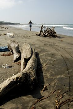 Ojo de viento: Paisajes de Veracruz