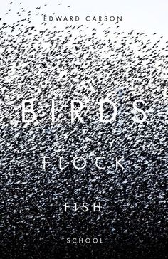 50 Covers for 2013 | The Casual Optimist - Bird Flock Fish School by Edward…