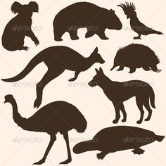 Find silhouette Australian animals stock images in HD and millions of other royalty-free stock photos, illustrations and vectors in the Shutterstock collection. Animal Silhouette, Silhouette Art, Australian Christmas, Aussie Christmas, Australia Tattoo, Outline, Animal Templates, Rena, Australia Animals