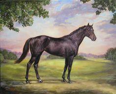 Ruffian Racehorse | Last Edit: June 16, 2013, 12:20:54 PM by rnmdh07 »