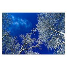 Acrylglasbild   Wandbild Glasbild Kunst Rahmenlos   Winterwunderland   modernes Design   in verschiedenen Größen   (90x60 cm) Cuadros Lifestyle http://www.amazon.de/dp/B0162X18T0/ref=cm_sw_r_pi_dp_S5Jlwb1P30H4K