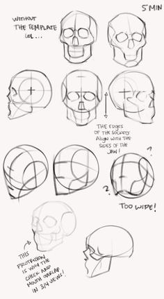 """Figure Drawing Tutorial kingcholera: """"Learning how to construct simplified heads in the October lesson! Drawing the skull is really helping me understand the jaw shape, and that is something I've struggled with for years. Skull Reference, Body Reference Drawing, Art Reference Poses, Anatomy Reference, Face Reference, Human Anatomy Drawing, Human Figure Drawing, Drawing The Human Head, Head Anatomy"""