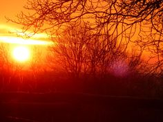 Winter sunrise in Templeton Natural Beauty, Sunrise, Celestial, Winter, Nature, Outdoor, Winter Time, Outdoors, Naturaleza