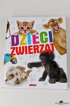 Nowości w naszej biblioteczce - grudzień - Teddy Bear, Toys, Animals, Activity Toys, Animales, Animaux, Clearance Toys, Teddy Bears, Animal