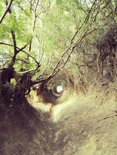 Ruta de Buenavista túneles