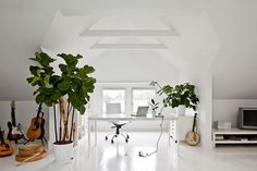 Exposed trusses, light floors, big plants.