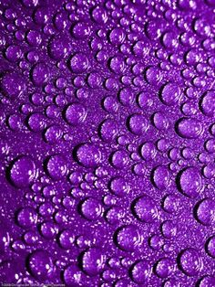 Purple rain drops.