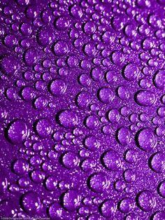 Purple rain drops.