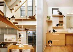 Wood Pet House Design