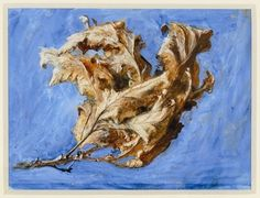 John Ruskin's watercolour Withered Oak Leaves 1879