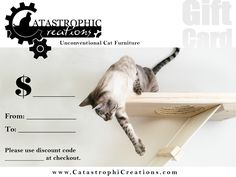 Unconventional Cat Furniture For Feline Instincts | Catastrophic Creations