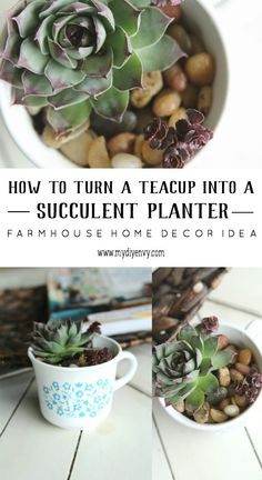 This DIY teacup succulent planter makes an easy and cute gift idea.   www.mydiyenvy.com