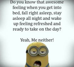 Funny Minions Pictures And Quotes.but also so true for me ! Funny Minion Pictures, Funny Minion Memes, Minions Quotes, Minion Humor, Funny Pics, Minions Love, My Minion, Despicable Minions, Cute Quotes