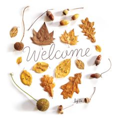 Fall art: draw faces on leaves Fall Crafts For Kids, Diy For Kids, Diy And Crafts, Autumn Tale, Leaf Projects, Autumn Illustration, Welcome Fall, Kawaii, Jolie Photo