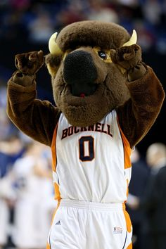 Bucky the Bison, mascot for the Bucknell Bison.