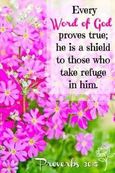 """Every word of God is pure: he is a shield unto them that put their trust in him."""" Proverbs 30:5 KJV"""