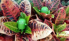 Dọn dẹp rác trên thiết bị Android
