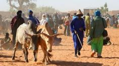 FG deploys task force to Taraba over farmers/herdsmen clashes – Commissioner: The Taraba Commissioner of Information and Re-orientation,…