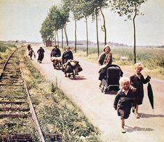 Après la percée de Sedan du 13 mai 1940 et la victoire de l'armée allemande lors de la Bataille de France (mai-juin 1940), huit à dix millions de civils français envahissent les routes décidés à fuir l'ennemi. Parmi les soldats français en retraite, ces « exodiens » (Jean-Pierre Azéma) sont présents sur tout le territoire, particulièrement dans le nord et l'est du pays. S'ils prennent parfois la direction du sud et de l'ouest ils erren...