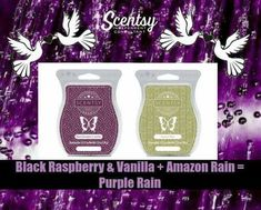 https://ashleighboggs2017.scentsy.us/