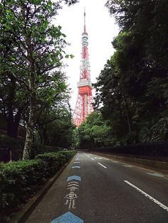 All the paths lead to the Tokyo Tower