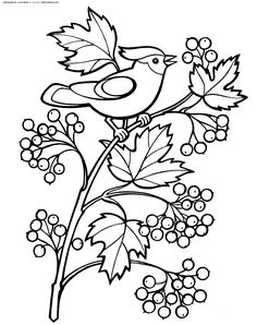 find this pin and more on coloring page