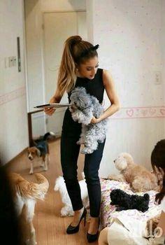 Quanti bei cagnolini!!!:-):-):-)