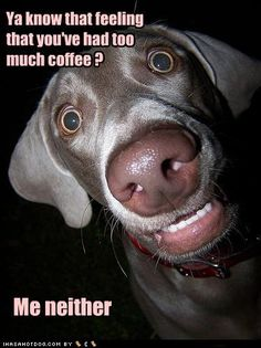 Too much coffee!