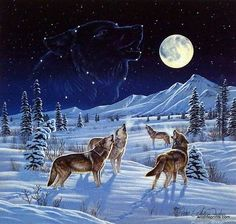 Cynthie Fisher Wolf Pack Picture MOONLIGHT SERENADE
