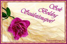Ciklámen színű rózsa, szülinapi képeslap nők részére, csillogó rózsával és kerettel.