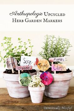 Looking for a new way to upcycle your Anthropologie catalogs? Check out this simple & quick tutorial for Anthropologie Upcycled Herb Garden Markers! I fall in… Garden Basket, Garden Planters, Herbs Garden, Gardening For Beginners, Gardening Tips, Hosta Care, Garden Frogs, Garden Gnomes, Herb Garden Design