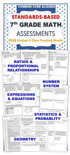 This resource contains a 1 page quick assessment for EVERY COMMON CORE MATH STANDARD  for 7th grade. It also contains a student checklist for each domain to track your students' mastery of these standards. Additionally, I have included a class tracking sheet to look at all of your students progress at a glance.  Includes: Ratios and Proportional Reasoning (7RP), The Number System (7NS), Expressions & Equations (7EE), Geometry (7G), Statistics & Probability (7SP)