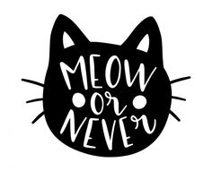 Free SVG cut file - Meow or never Silhouette Cameo Tutorials, Silhouette Projects, Silhouette Files, Silhouette Design, Cricut Vinyl, Svg Files For Cricut, Cricut Fonts, Cricut Explore Air, Free Svg Cut Files