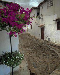 High quality images of villages. Sci Fi Fantasy, Fantasy Artwork, High Quality Images, South America, Travel, Interior, Blog, Vestidos, Wanderlust