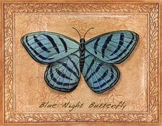 """Blue Night Butterfly"" - Butterflies / Thomas Wood"