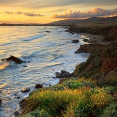 Cambria, California.  This trip gave us the perfect name for the daughter we would have.