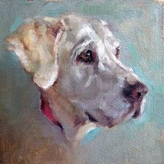 Beautiful Golden Lab painting in oil on canvas with bright accent colors by Heather Lenefsky Art #DogPainting #OilPaintingDog