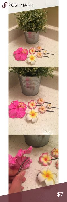 Flower Hair Clip Bundle Open to all offers! All purchased on the island of Maui. Some are Bobby pins and some are clips. All amazing condition! I store these in a box where they do not get crushed. I'm looking for someone who might appreciate them more than me. :)  Check out my page for more cute stuff! I mostly sell clothing/accessories/jewelry/makeup!  Accessories Hair Accessories