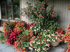 Color containers for shade