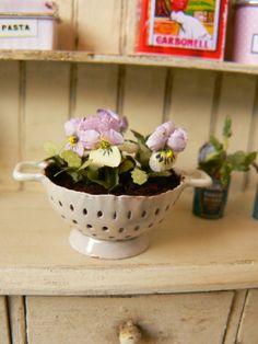 MiniEden: De nuevo Primavera