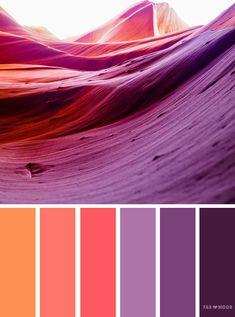 Orange and purple color scheme,orange peach and purple color scheme ,color scheme ,color palette - looking for color inspiration? Orange Color Schemes, Color Schemes Design, Orange Color Palettes, Color Schemes Colour Palettes, Bedroom Color Schemes, Orange Palette, Color Combinations, Coral Color, Paint Schemes