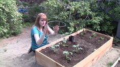 Gardening: Your Backyard Oasis Science Inquiry, Vegetable Garden, Perennials, Oasis, Backyard, Gardening, This Or That Questions, Plants, Patio