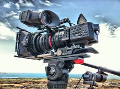 photo by @torsteindop  Cape Lambert hot and dusty pindan #pilbara #fs700 #movcam #alphatron #red17-50 pic.twitter.com/jhZKDes2