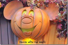 Fall in Disney World