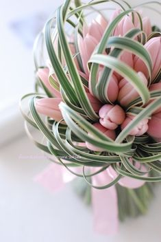 "Bouquet of Tulip ""rose bébé"""