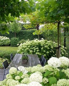 Garden design isn't only about earning your garden more attractive, but is also . Garden design isn't only about earning your garden more attractive, but is also essential in making it more functional. A little garden design differs. White Gardens, Small Gardens, Outdoor Gardens, Amazing Gardens, Beautiful Gardens, Design Jardin, Garden Cottage, Garden Living, Small Garden Design