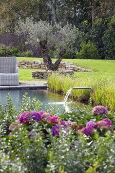 Bassin naturel et sérénité pour ce jardin
